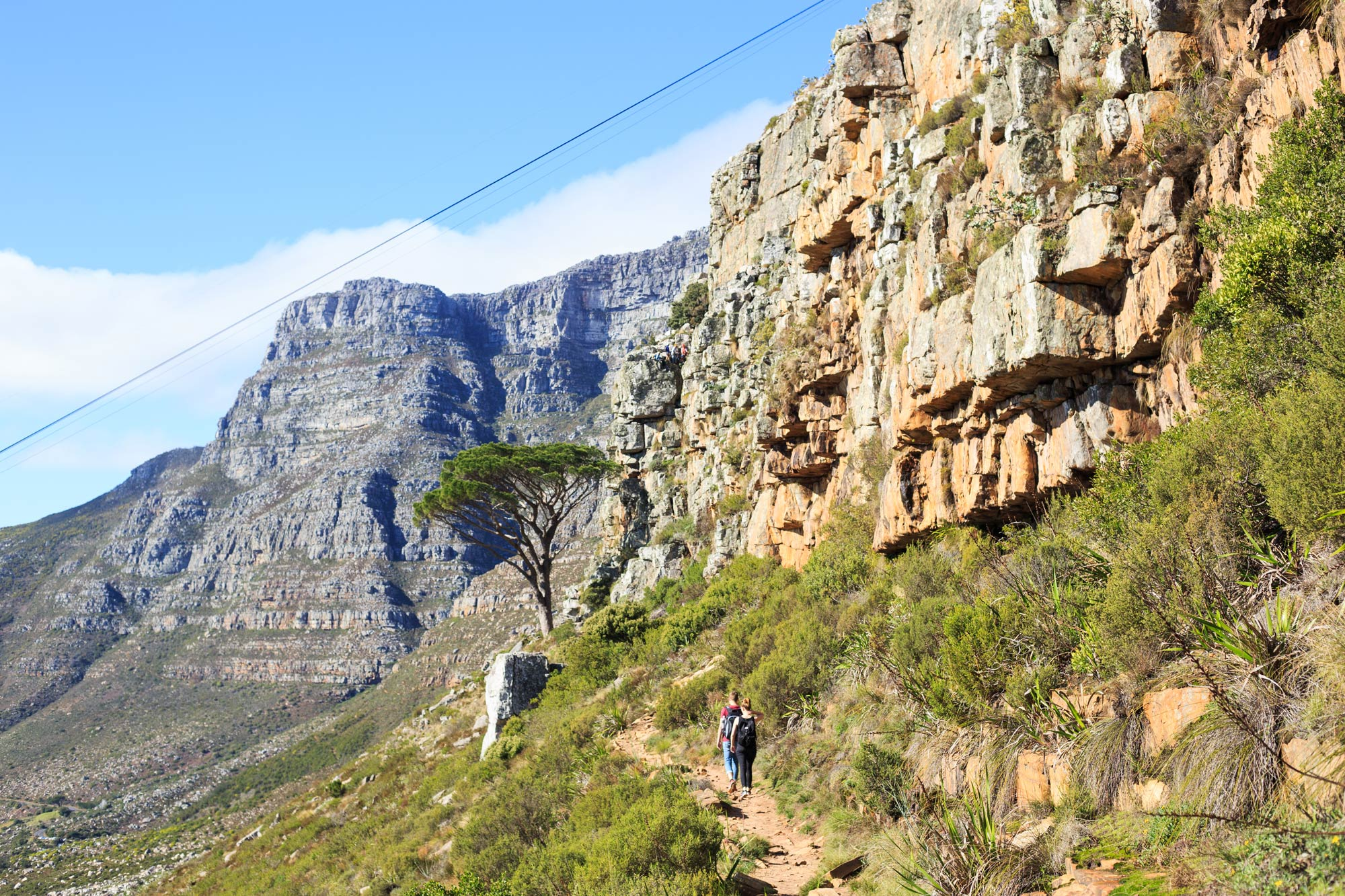 The Table Mountain.